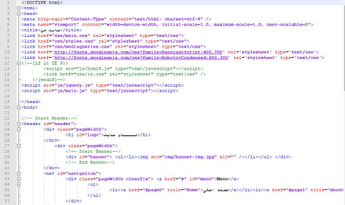 طراحی سایت داینامیک یک